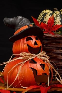 autumn-21498_640